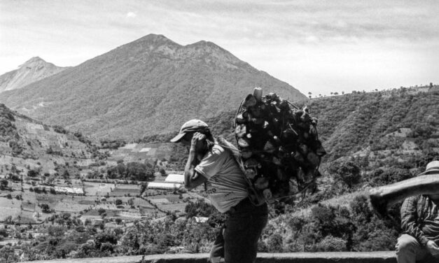 Transformar el veneno en remedio: El poder de las Comunidades Resilientes