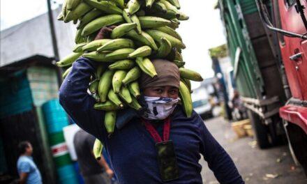 Guatemala: retrato de una auténtica finca bananera